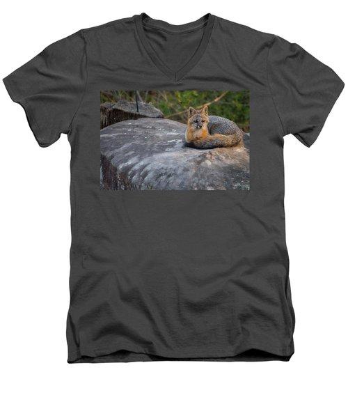 Kingpin Men's V-Neck T-Shirt