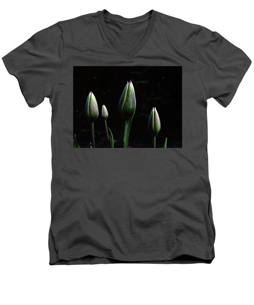 Kiss Kiss Men's V-Neck T-Shirt