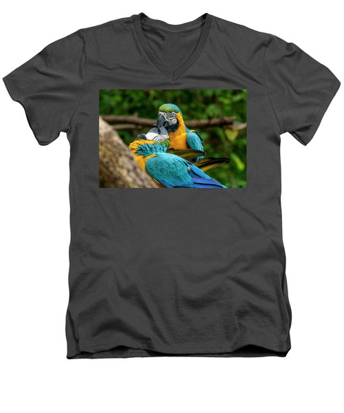 Kissing Parots Men's V-Neck T-Shirt