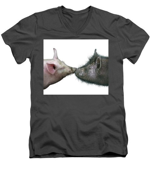 Kissing Pigs Men's V-Neck T-Shirt