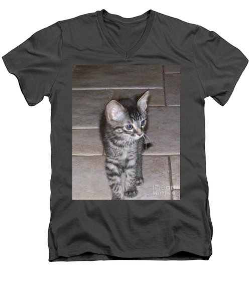 Martius Kitten Men's V-Neck T-Shirt