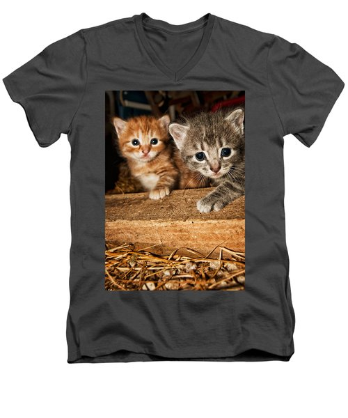 Kittens Men's V-Neck T-Shirt