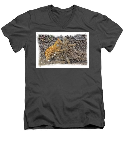 Kitty Thinking Of Mischievous Things Men's V-Neck T-Shirt by Constantine Gregory