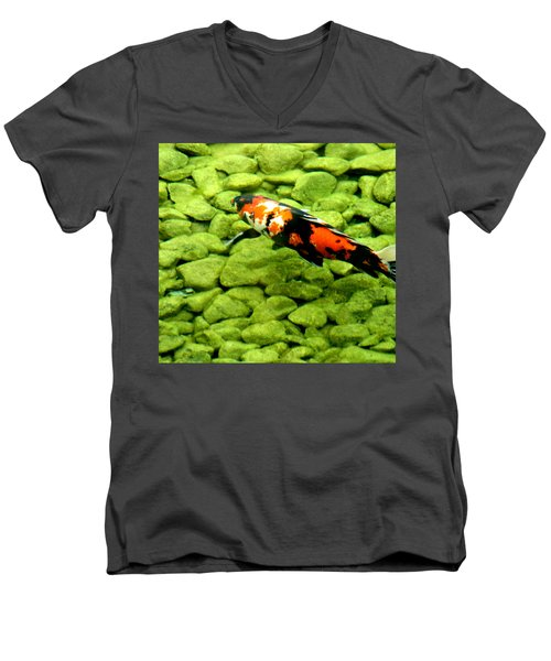 Men's V-Neck T-Shirt featuring the photograph Koy by Christopher Woods