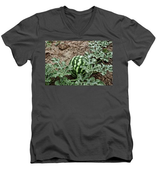 Ky Watermelon Men's V-Neck T-Shirt