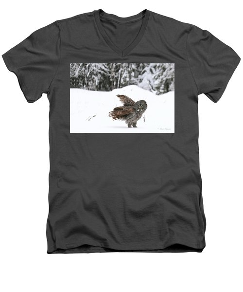 L Epouvantail. Men's V-Neck T-Shirt
