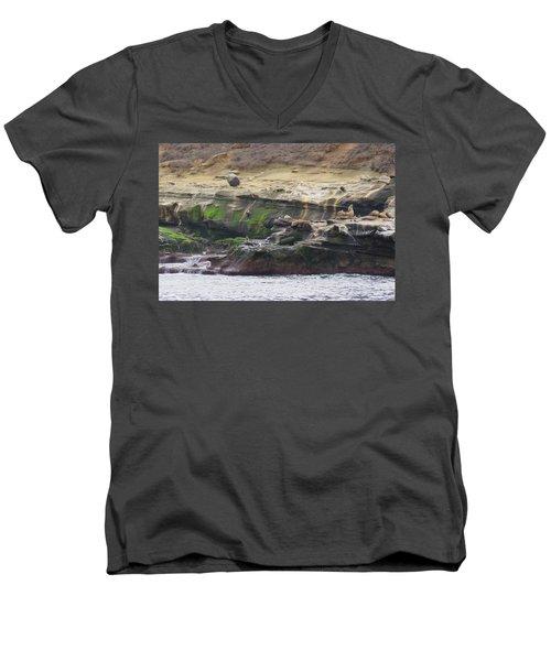 La Jolla Sea Lions Men's V-Neck T-Shirt