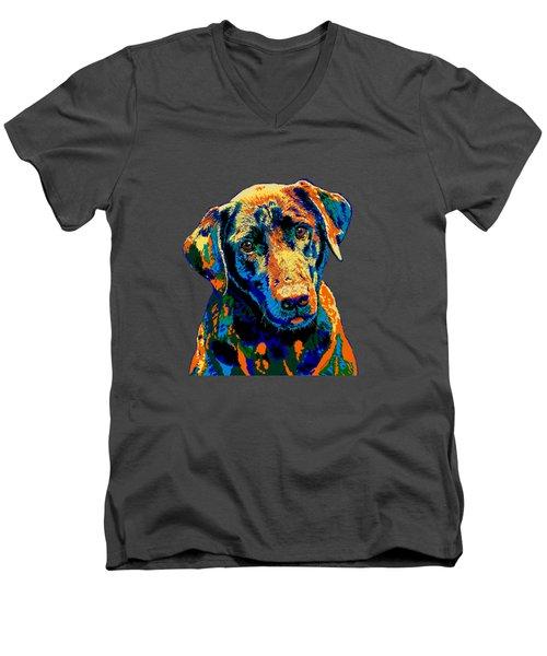Labrador Retriever Of Many Colors Iv Men's V-Neck T-Shirt