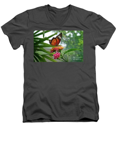 Lacewing Butterfly Men's V-Neck T-Shirt