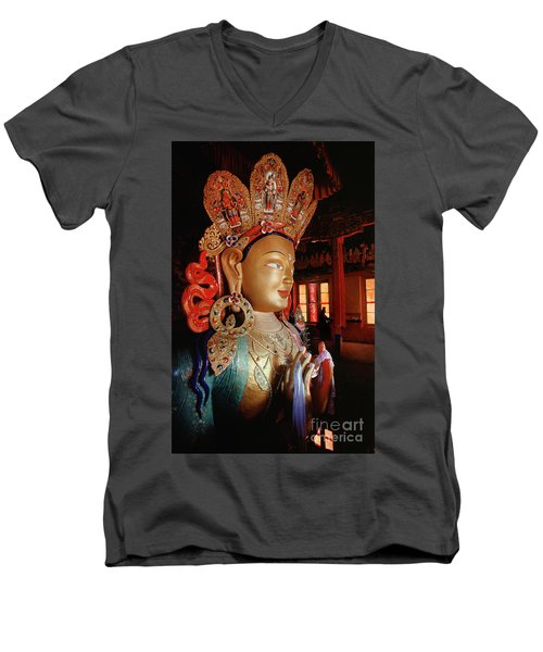 Ladakh_41-2 Men's V-Neck T-Shirt