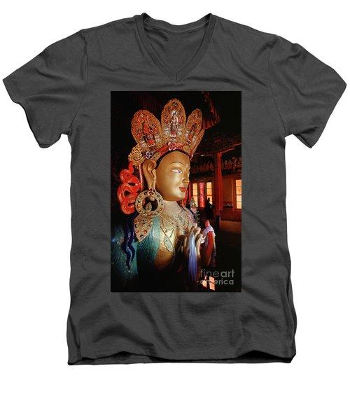 Ladakh_41-2 Men's V-Neck T-Shirt