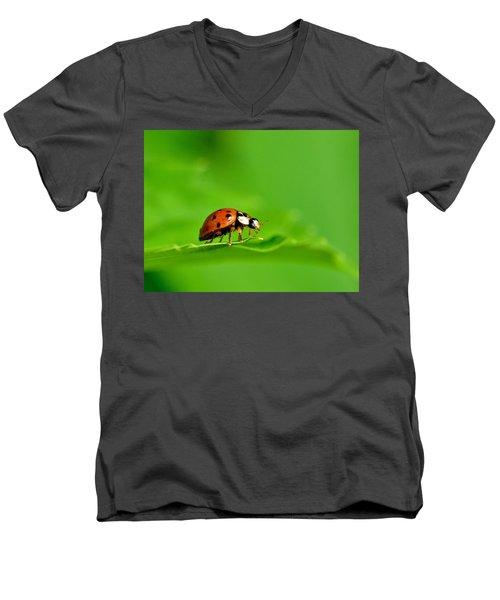Lady Bug Men's V-Neck T-Shirt