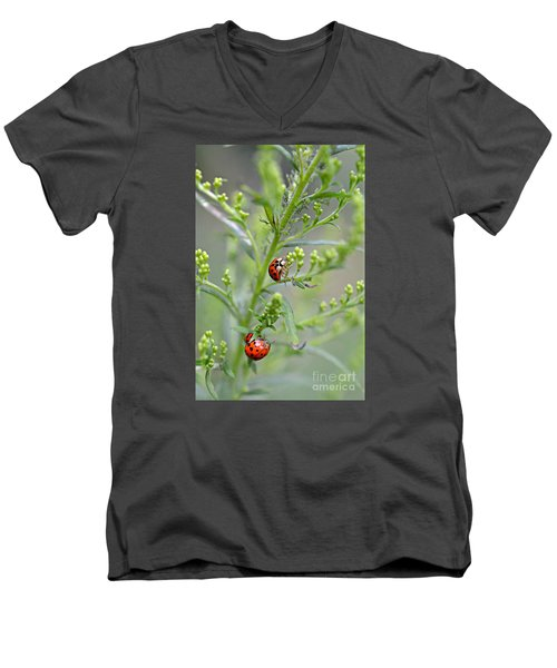Men's V-Neck T-Shirt featuring the photograph Ladybug Ladybug... by Lila Fisher-Wenzel