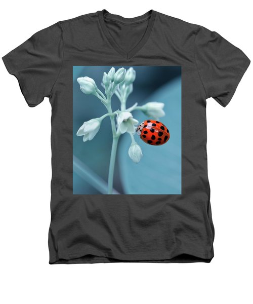 Men's V-Neck T-Shirt featuring the photograph Ladybug by Mark Fuller