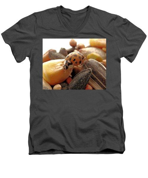 Ladybug On The Run Men's V-Neck T-Shirt by Belinda Lee