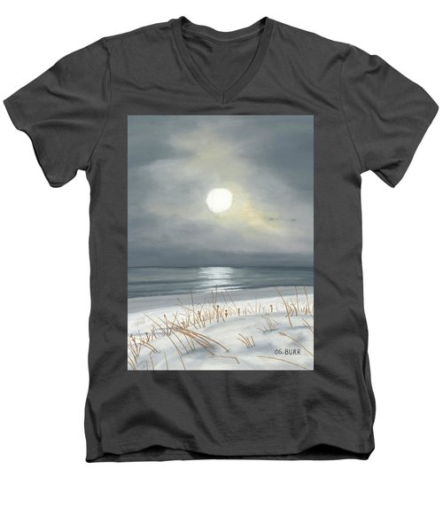 Lake Michigan Men's V-Neck T-Shirt