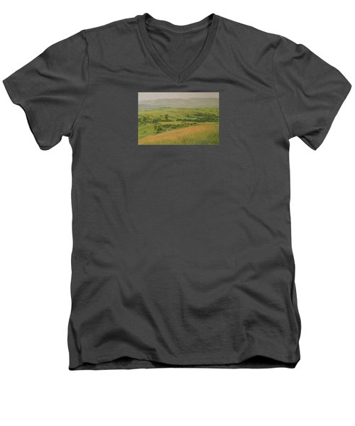 Land Of Grass Men's V-Neck T-Shirt