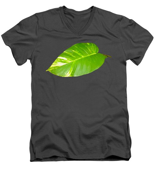 Large Leaf Art Men's V-Neck T-Shirt