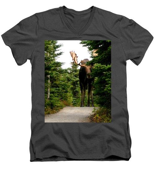 Large Moose Men's V-Neck T-Shirt