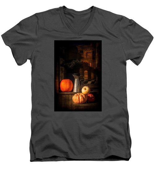 Last Autumn Sunlight Men's V-Neck T-Shirt