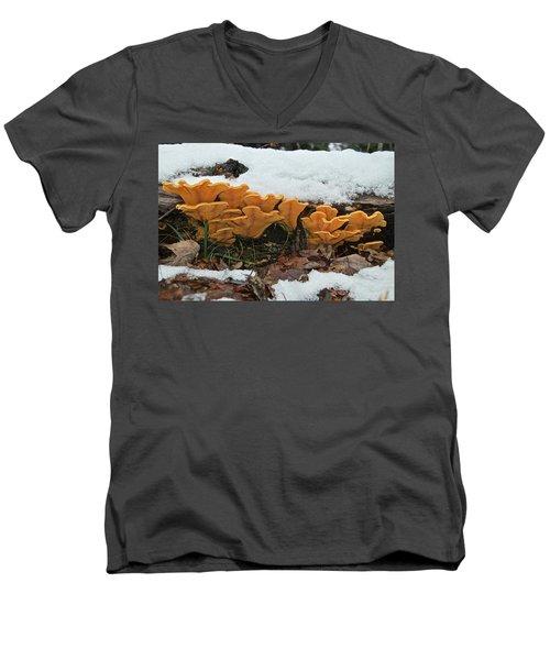 Last Mushrooms Of The Seasons Men's V-Neck T-Shirt by Michael Peychich