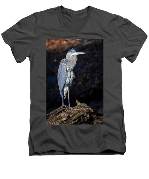 Men's V-Neck T-Shirt featuring the photograph Late Afternoon Heron by Alan Raasch