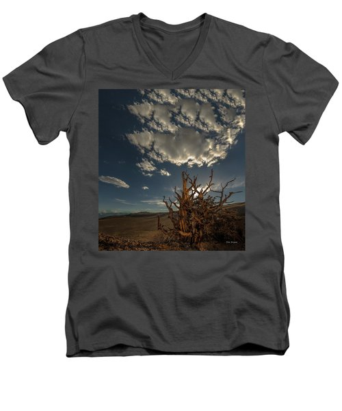 Late Afternoon In The Bristlecone Forest Men's V-Neck T-Shirt