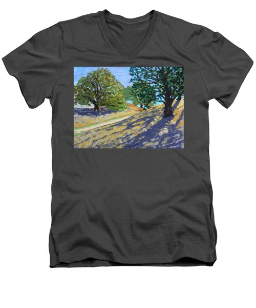 Men's V-Neck T-Shirt featuring the painting Late Light's Shadows by Gary Coleman