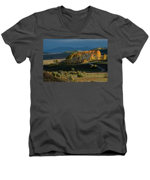 Men's V-Neck T-Shirt featuring the photograph Late Stand by Dana Sohr