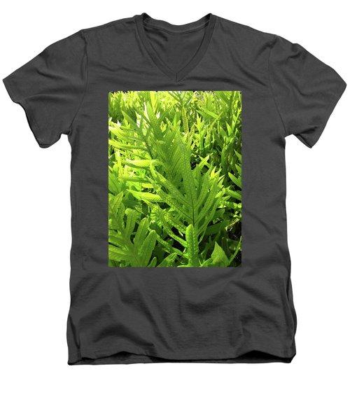 Lauae Fern Men's V-Neck T-Shirt