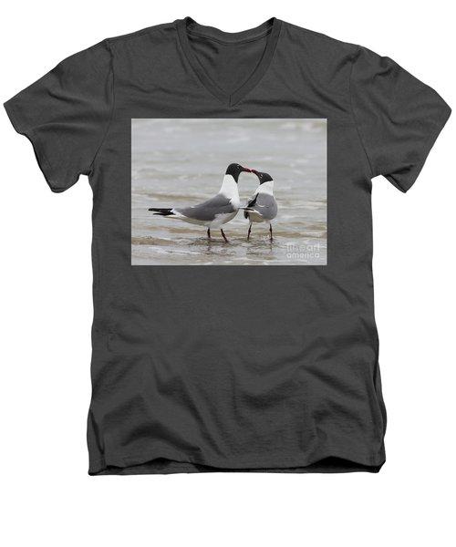 Laughing Gulls In Love Men's V-Neck T-Shirt