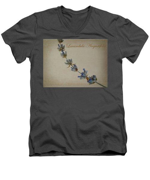 Lavandula Angustifolia Men's V-Neck T-Shirt by Julia Wilcox