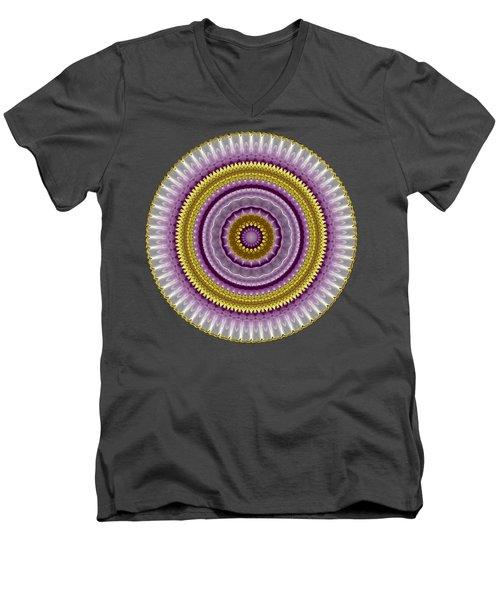 Lavender And Gold Lace Men's V-Neck T-Shirt