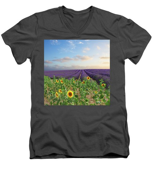 Lavender And Sunflower Flowers Field Men's V-Neck T-Shirt by Anastasy Yarmolovich