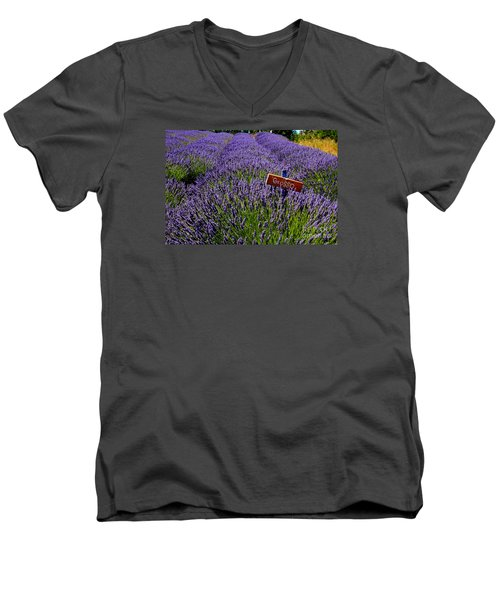 Men's V-Neck T-Shirt featuring the photograph Lavender Bounty 2 by Tanya  Searcy