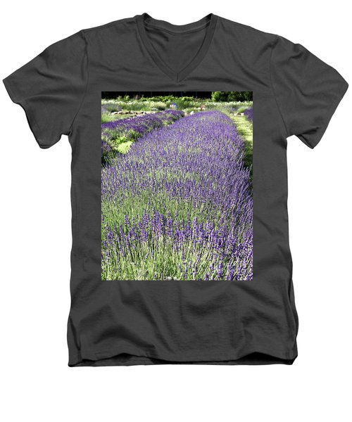 Lavender Men's V-Neck T-Shirt