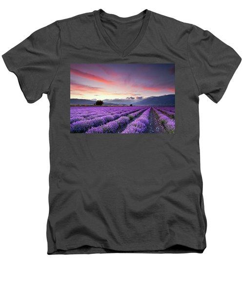 Lavender Season Men's V-Neck T-Shirt