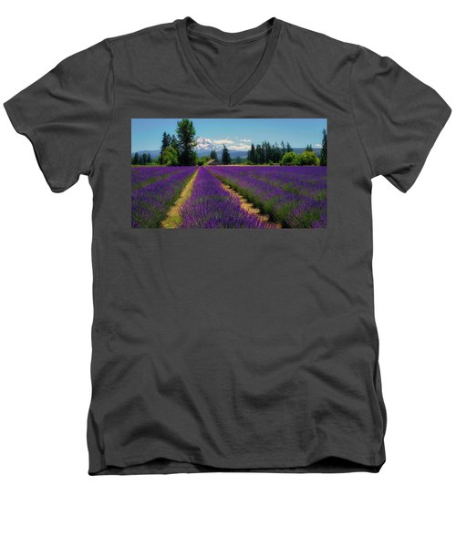 Lavender Valley Farm Men's V-Neck T-Shirt