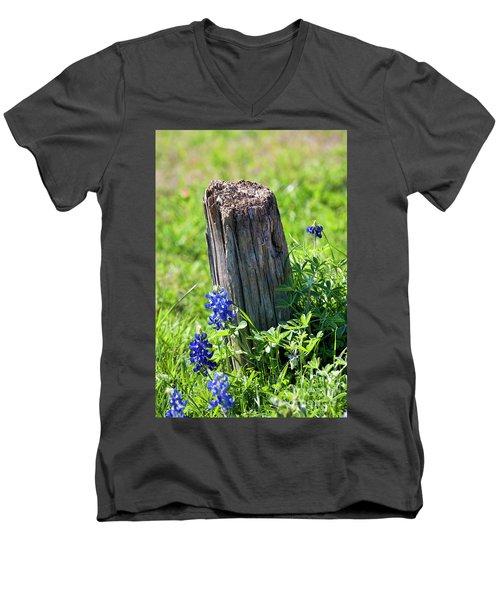 Lazin' In The Sun Men's V-Neck T-Shirt by Joan Bertucci