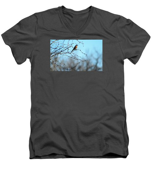 Lazuli Bunting Looks Out Men's V-Neck T-Shirt