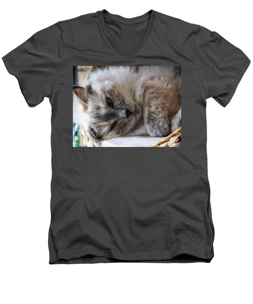 Men's V-Neck T-Shirt featuring the photograph Lazy Kitty by Karen Stahlros