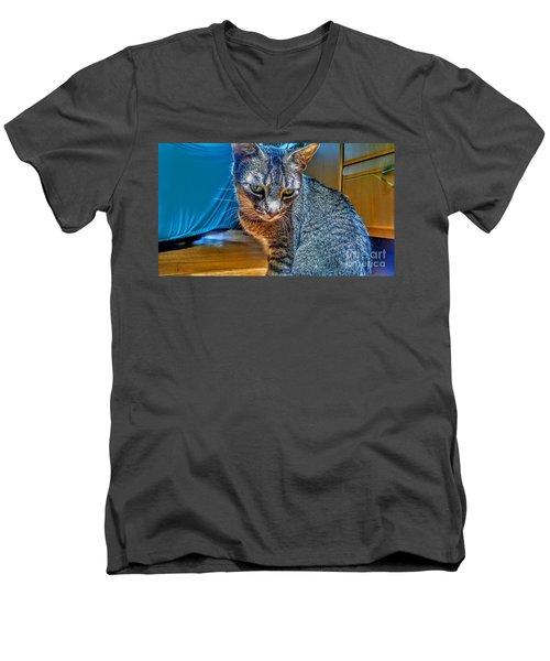 Le Chat Bleu Men's V-Neck T-Shirt