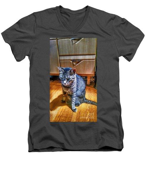 Le Chat Gris Men's V-Neck T-Shirt