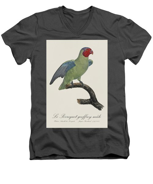 Le Perroquet Geoffroy Male / Red Cheeked Parrot - Restored 19th C. By Barraband Men's V-Neck T-Shirt