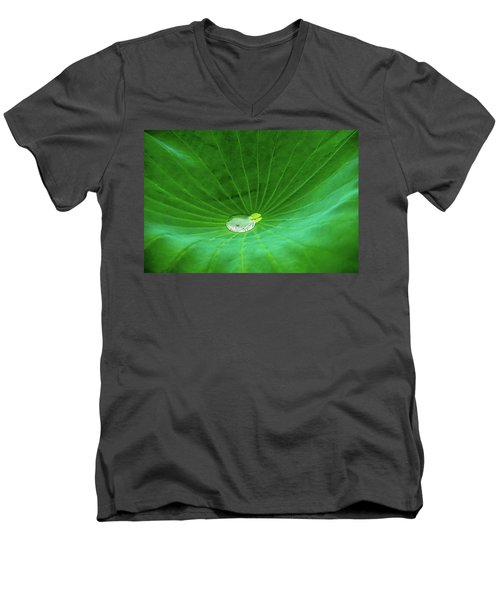 Leaf Cupping A Giant Water Drop Men's V-Neck T-Shirt