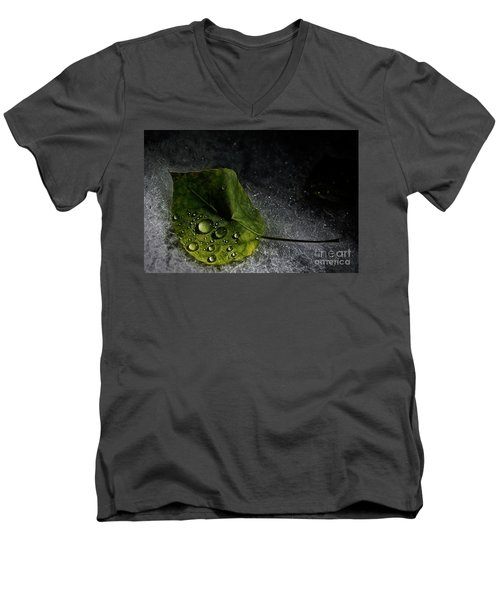 Leaf Droplets Men's V-Neck T-Shirt