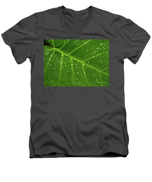 Leaf Drops Men's V-Neck T-Shirt