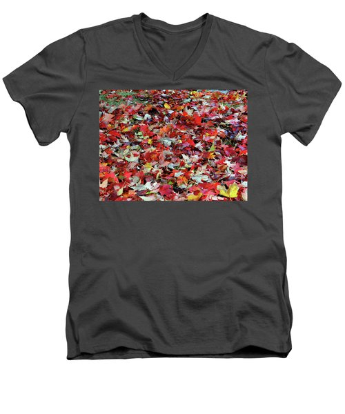 Leaf Pile Men's V-Neck T-Shirt