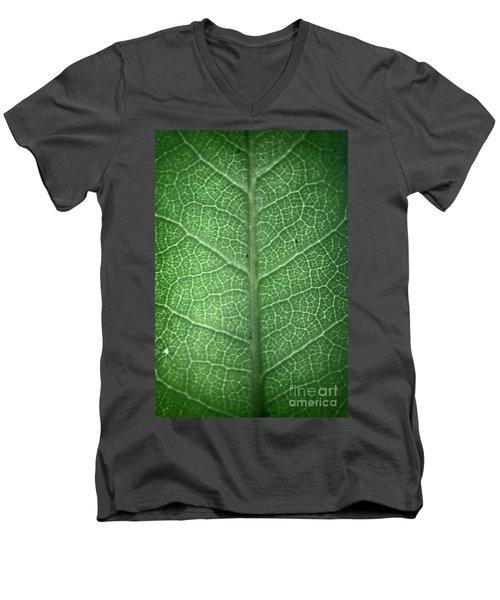 Leaf Vein Men's V-Neck T-Shirt