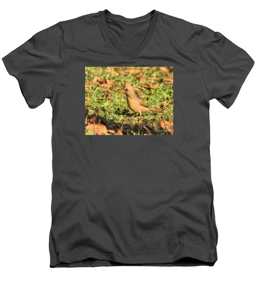 Men's V-Neck T-Shirt featuring the photograph Leafy Cardinal by Debbie Stahre